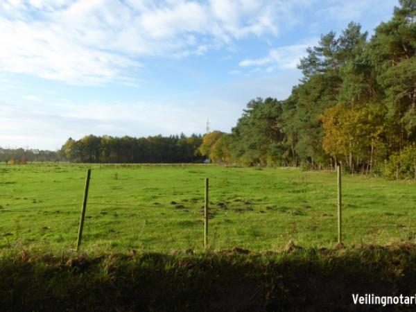 onverdeelde helft in twee percelen grond aan de Putseweg  Ossendrecht