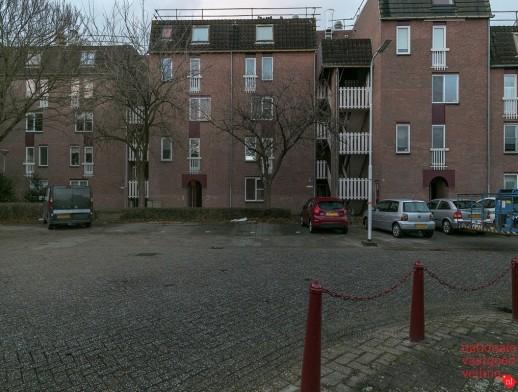 Goudmos 158 Nieuwerkerk aan den IJssel