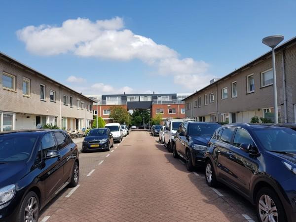 Monte Adi 15 Amsterdam