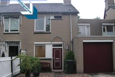 Bladlood 4 Hoogvliet Rotterdam