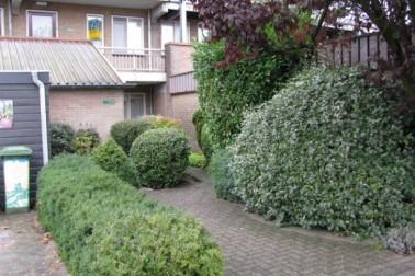 Reigerskamp 536 Maarssen