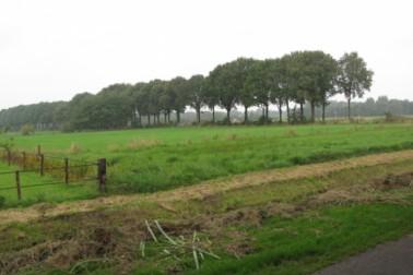 Barsweg Hollandscheveld