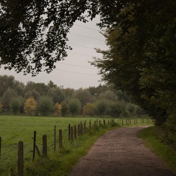 Landgoed Oosterhout, , hondenlosloopgebied