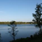 Mookerplas, Middelaar, hondenlosloopgebied