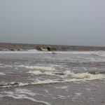 Noordwijk aan Zee, Noordwijk aan Zee, hondenlosloopgebied