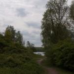 Berendonck, Wijchen, hondenlosloopgebied