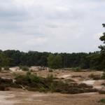 Soesterduinen, Soest, hondenlosloopgebied