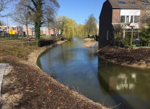 Natuurvriendelijke oevers Rompertpark 's-Hertogenbosch